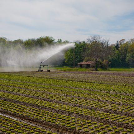 La Haute-Garonne est en restriction d'usage de l'eau depuis le 20 mai dernier.