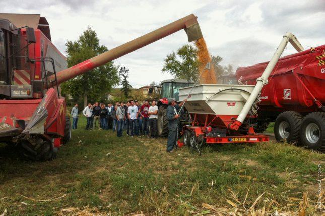 Une bonne partie du lycée était venue voir le résultat de la conduite SemExpert du maïs.