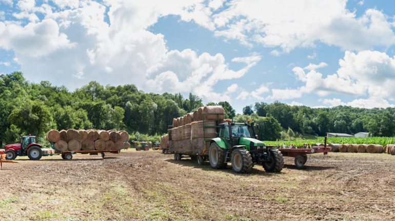 Une soixantaine d'éleveurs du canton a contribué à rassembler 450 bottes de foin, ce 8 août.