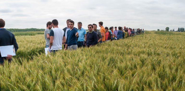 Des expérimentations qui mêlent les mondes de l'enseignement agricole, de la recherche agronomique et des agriculteurs