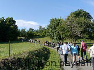 75 marcheurs lors de la dernière Rando des Champs.