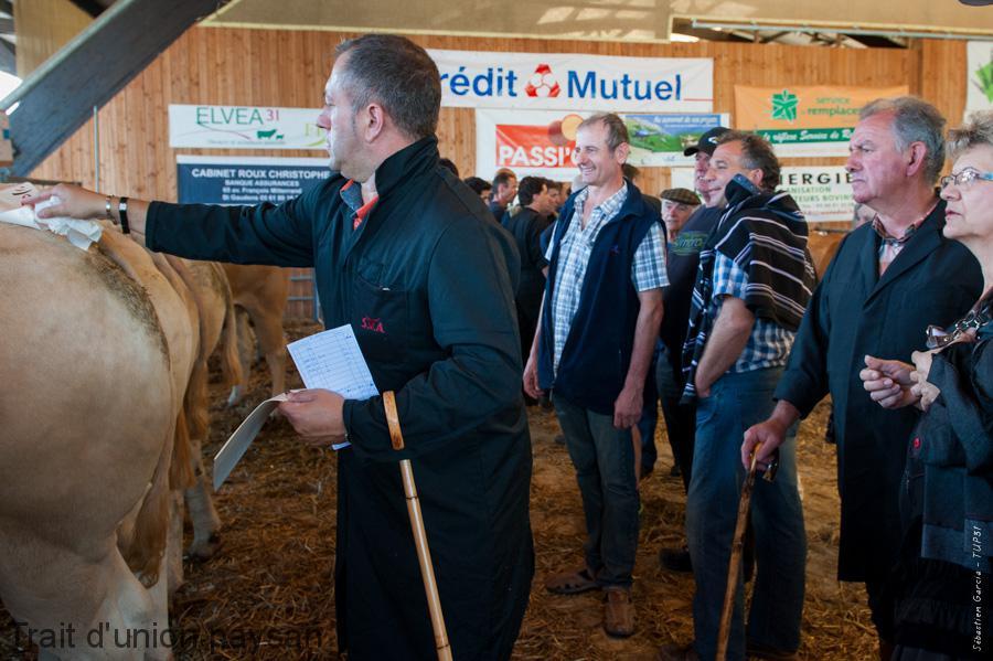 Yves Soum (au centre), lors du Concours de bovins de boucherie 2015.