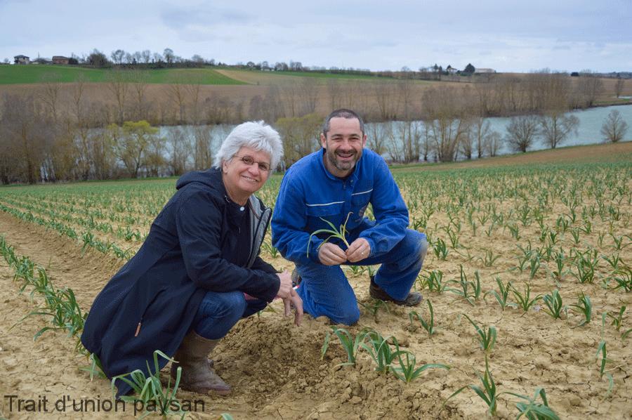 Laurence Espagnacq, technicienne à la Chambre d'agriculture, accompagne le Syndicat de défense de l'ail violet de Cadours dans toutes ses démarches. Ici, avec le président Sébastien Taupiac.