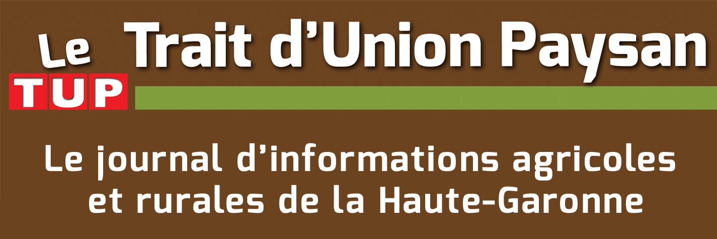 Bandeau Trait d'union paysan (Tup31)