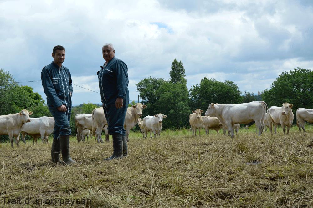Guillaume et Guy Benazet pratiquent le pâturage tournant pour limiter les dégâts sur prairie. Quand les clôtures mobiles veulent bien s'enfoncer dans les terres boueuses.
