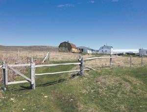 Nicolas Meyrignac, ancien conseiller installation à la Chambre d'agriculture de Haute-Garonne, termine une mission d'un an au service de l'agriculture de Saint-Pierre-et-Miquelon. Pour lui, Des opportunités d'installation existent au sein de cet archipel français situé au sud de Terre-Neuve.