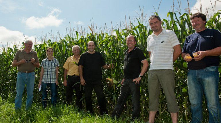 La délégation des deux chambres d'agriculture devant la parcelle de maïs, en compagnie de l'exploitant et des entrepreneurs.