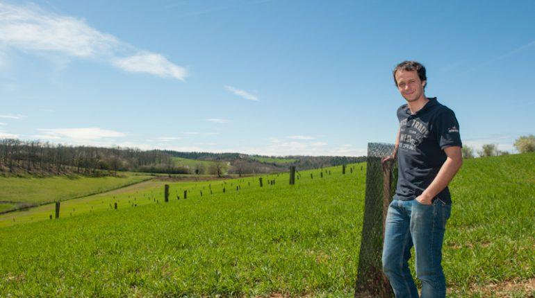 Arbres et Paysages d'Autan a déjà participé à la mise en place de plusieurs parcelles agroforestières dans le département