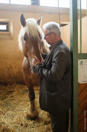 Daniel Saint-Paul, éleveur de chevaux de sport à Castillon St-Martory, préside l'association qui a repris la gestion du centre technique de monte de Saint Gaudens.