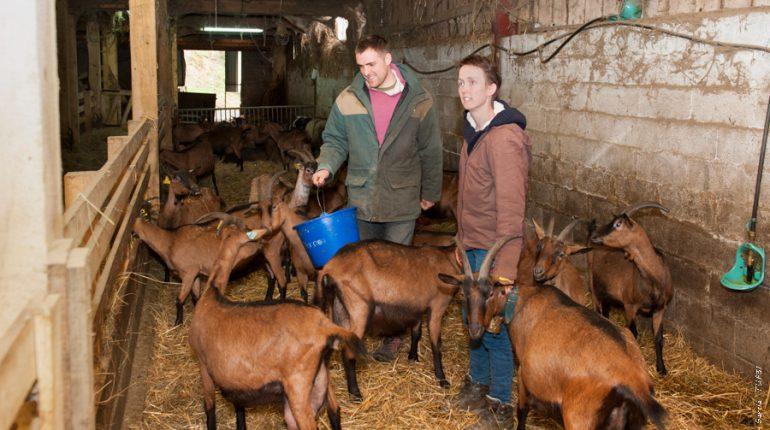 Matthieu et Élodie Poidevin ont fait appel au Contrôle laitier dès le début de leur activité.