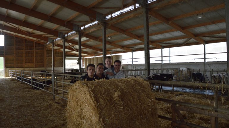 (g. à dr;) Paul Roux, Quentin Payrastre, Baptiste Mur et Alexandre Didier, 4 jeunes décidés à faire avancer la compréhension du pointage animal.