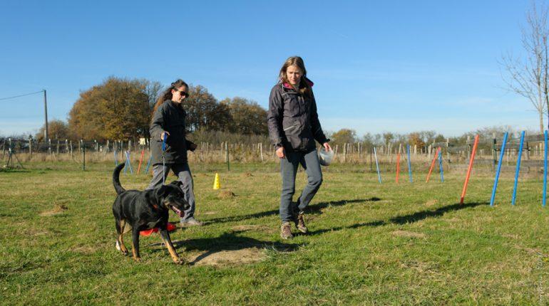Cécile Demblans (à droite) rencontre un beau succès avec ses ateliers individuels ou collectifs d'éducation canine.